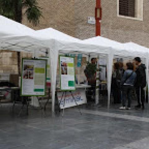 Imagen1 Red De Economía Alternativa y Solidaria. REAS Aragón