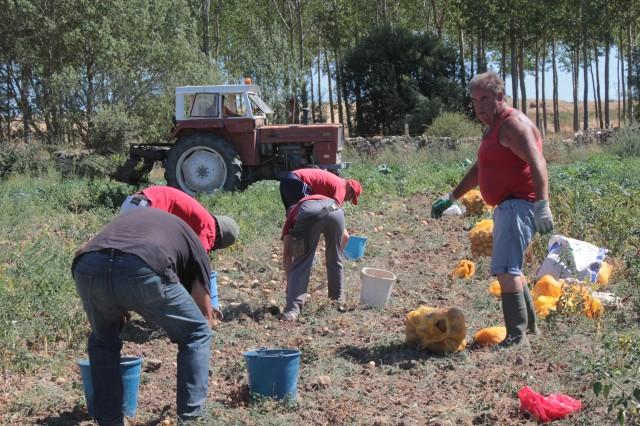 Imatge3 Asociación Desarrollo Comunitario BºAires (ASDECOBA)