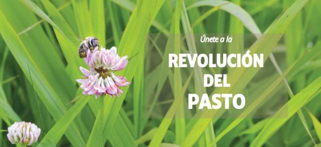 Imagen1 Carlos Enrique Pastor Sánchez