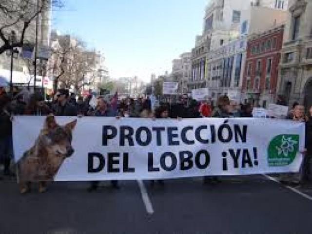 Imatge1 ECOLOGISTAS EN ACCIÓN MADRID-AEDENAT