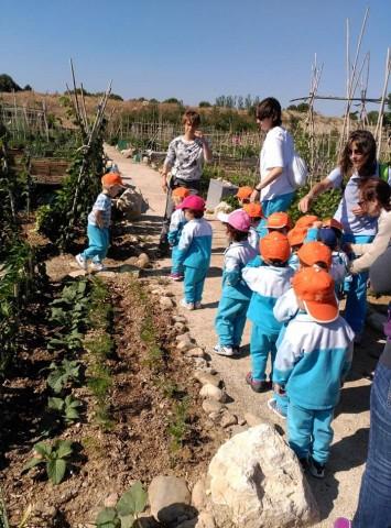 Imatge2 Asociación DOCE