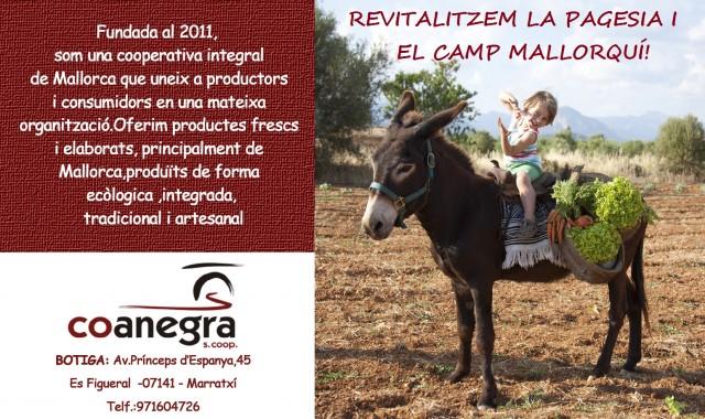 Imatge2 Coanegra, S.coop.