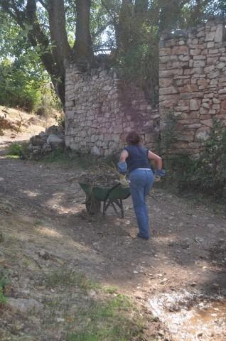 Imatge3 Asociación Levando Querencia