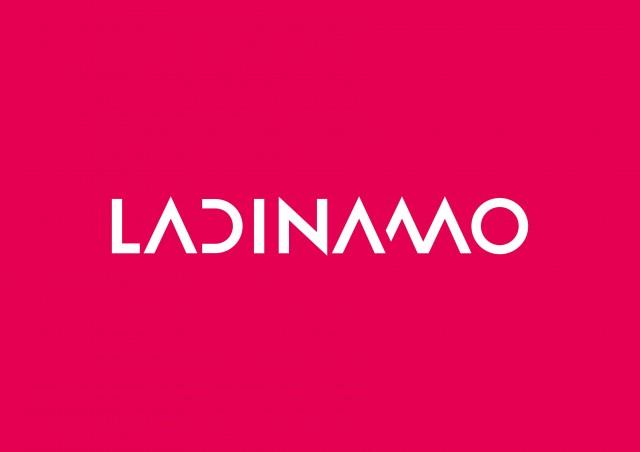 Imatge1 La Dinamo Fundació