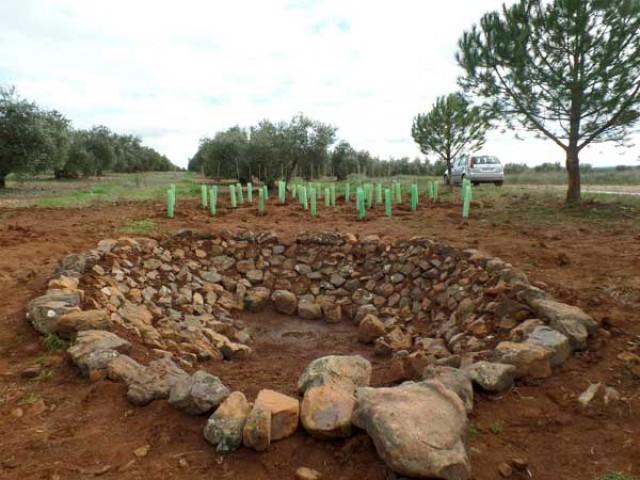 Imatge4 Ecoherencia SCA
