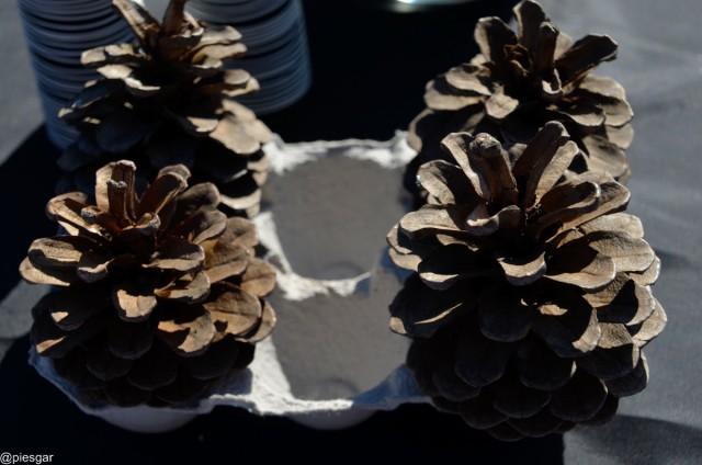 Imagen1 Plataforma d'Entitats de Roquetes
