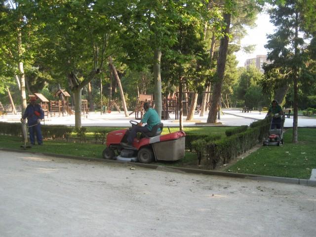 Imagen3 SERVICIOS PARQUE DE DELICIAS, SL